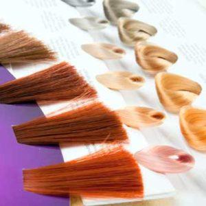 Pop Hair Formation - Améliorer ses compétences en colorimétrie